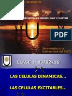 Biologia - Caracteristicas de Las Celulas (unne)