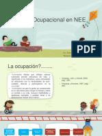 Evaluación Ocupacional de NEE