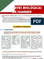 5 Leyes Biológicas de Hammer