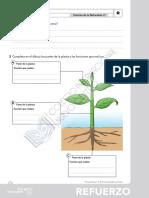 Ciencias Naturales, Tema 3, ejercicios de refuerzo y ampliación.pdf