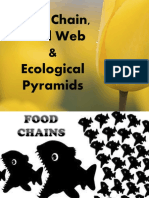 foodchainfoodwebandecologicalcycle-140302224948-phpapp02.pdf