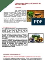 Normas Básicas Del Control Del Medio Ambiente Como