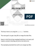 Fuzzy Merger 101