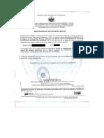 Modelo Carta de Antecedentes Web