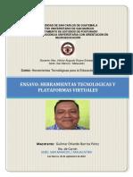 Ensayo Tecnología y Plataformas Virtuales