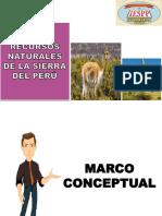 RECURSOS NATURALES DE LA SIERRA PERUANA