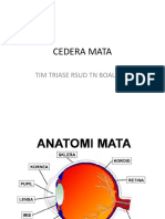 2. Cedera Mata-converted