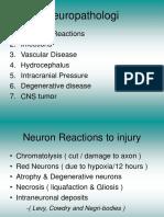 Neuropath o Log i