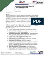 Corrosion Virtual - INEGAS.pdf