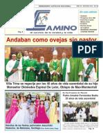 Semanario Católico Camino 22.07.2018
