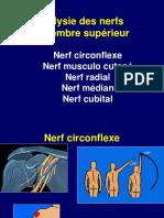 4 Paralysie Nerfs Membre Sup1 Bm