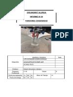 Laboratorio 4. Funciones Oxigenadas.pdf