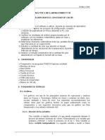 04 Laboratorio 1 Análisis gráfico.pdf