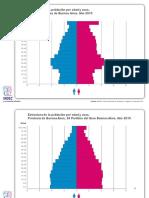 censo2010.pdf