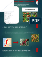 frutales-andinos.pptx