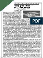 Kult_(Dnevnik Demokracija, 30. Oktobra 1994)