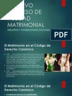 Proceso de nulidad matrimonial