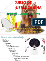 Power Point Curso Peluqueria Canina