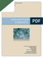 202095794 Informe Actividad Laboratorio Parasitos