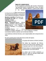 ANIMALES CARNÍVOROS 2.1..pdf