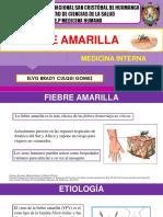 Fiebre Amarilla-Medicina Interna