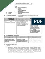 Ejemplo de sesion de aprendizaje.pdf