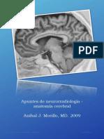 17532133-Apuntes-de-neurorradiologia.pdf