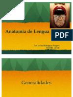 78372199-Anatomia-de-Lengua.pdf