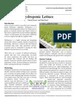 Hydro Lettuce