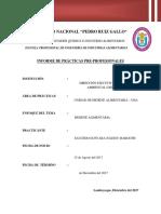 Informe Practicas[240] (Reparado)