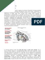 Modulo 1 Fisiologia Cardiaca