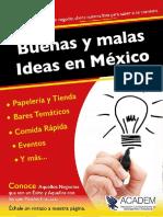 Buenas y Malas Ideas de Negocios en Mexico