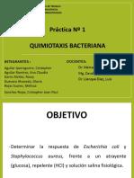 Practica 1- Quimiotaxis Bacteriana.pptx [Reparado]
