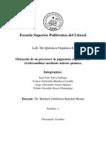 Informe-Final.P-nitroanilina.docx