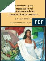 SEPLINEAMIENTOSPARALAORGANIZACIONYFUNCIONAMIENTODELOSCONSEJOSTECNICOSESCOLARES.pdf