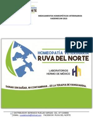 Asterias Rubens medicina homeopática para la diabetes