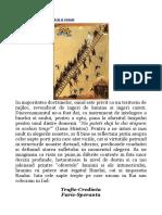 130405212-Mistica-Divina.pdf