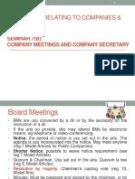 Seminar 7(b)_Company Meeting