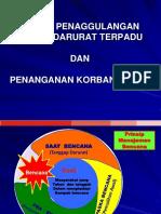 triage & SPGDT.pptx