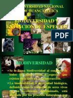 Biodiversidad Am