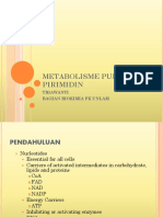 metab_purin_pirimidin[1]