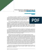 Artículo - Conus Fergusoni y Spondylus Princeps en La Cosmovisión Mochica y Sicán - Moíses Tufinio Culquichicón