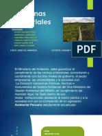 normas sectorialesdiapositiva)