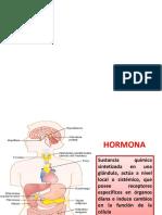 1 Capitulo 74 Hormona 2018 Guyton