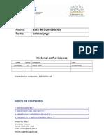Acta de Constitucion METODOLOGIA PMI
