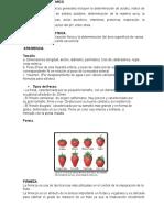 Analisis Fisicoquimico Fresa