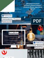 Plasticaucho Programa