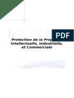 Protection de la Propriété Intellectuelle, Industrielle, et Commerciale