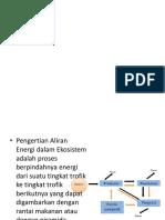 Ekologi Aliran Energi-1
