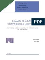 DINÁMICA DE SUELOS Y SUSCEPTIBILIDAD A LICUEFACCIÓN. Efecto de los sismos en el suelo, y en la resistencia de las edificaciones _2.pdf
